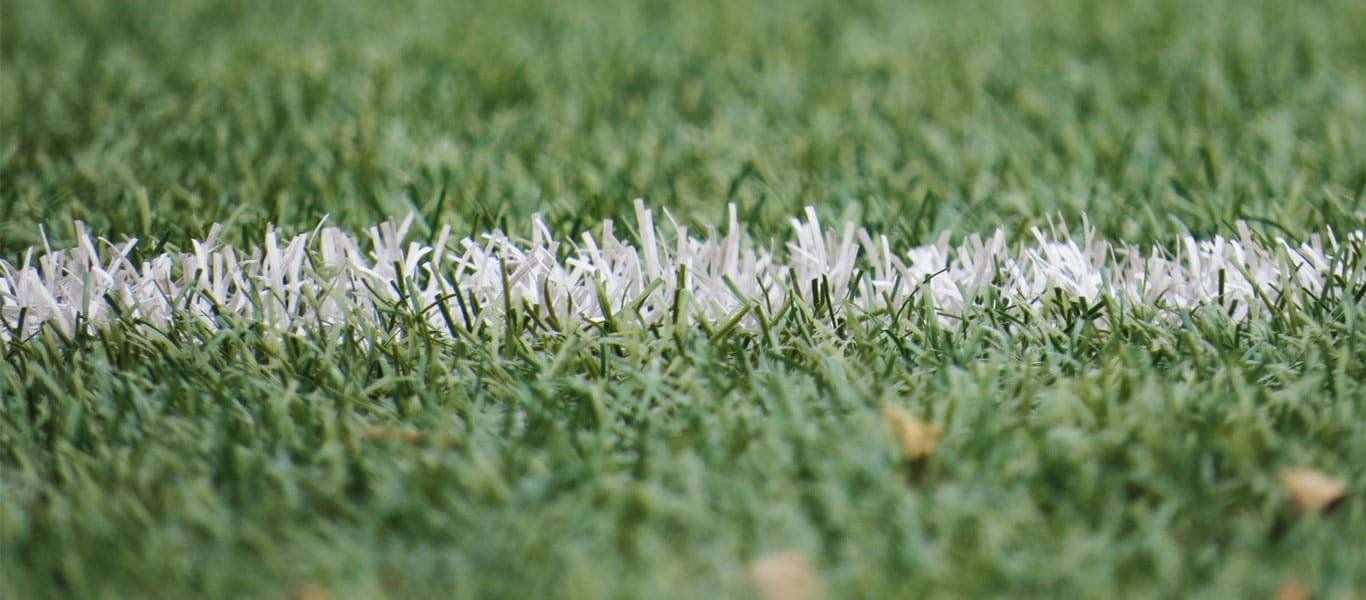 A Review Of Phoenix's Sports Portfolio